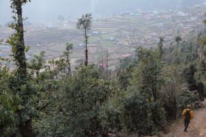 Melamchigau in the Helambu region