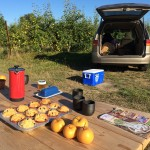 Sweet breakfast in the orchard with their fruit, honey, jam and crab.