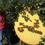Owner Dennis Reveals Dry Slough Orchard sign